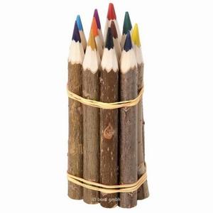 Kleurpotloden set 12 kleuren Boomstam