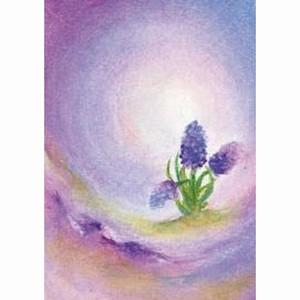 Oliepastelkaart De Hyacint per 10 stuks