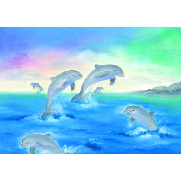 Oliepastelkaart Dolfijnen per 10 stuks