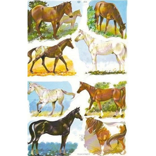 Poëzieplaatje (10st) Paarden
